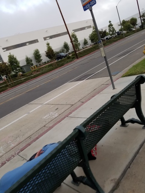 bus bench man